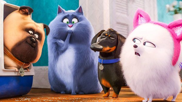 باکس آفیس هالیوود 2019/ افتتاحیه 43 میلیون دلاری The Secret Life of Pets 2