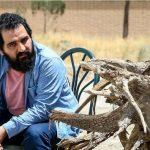 حضور «للو خوانی» در فستیوال زردآلوی طلایی ارمنستان
